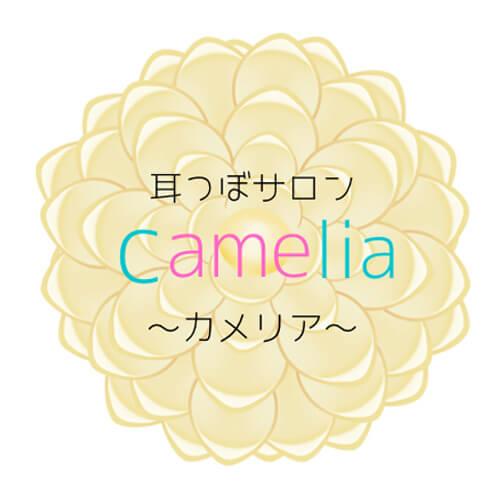 豊田市のダイエットなら耳つぼダイエットサロンカメリアにお任せください!